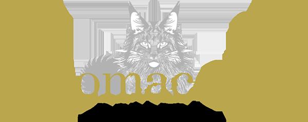 Nikomacoon's Cattery - Élevage et vente de maine coons d'excellence